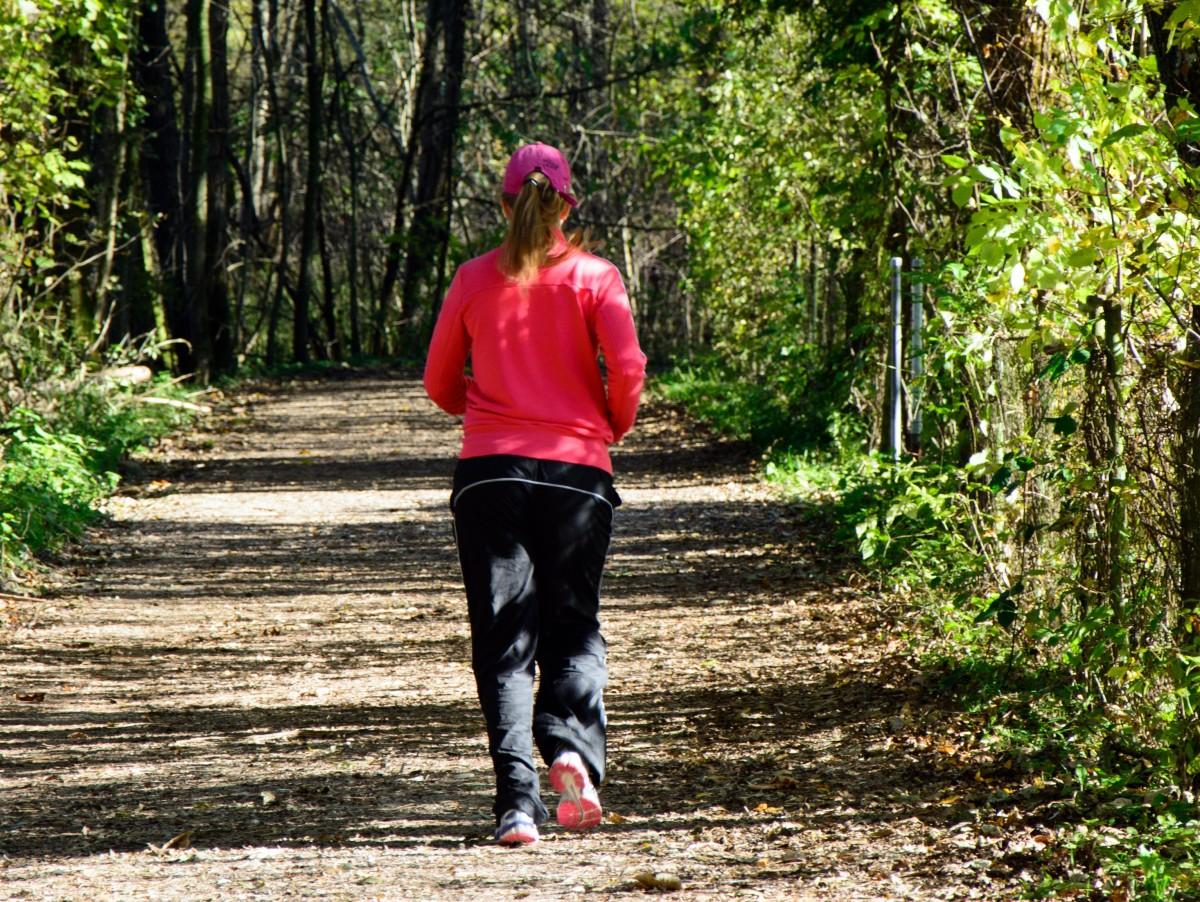 Powrót do swobodnego biegania w lasach!